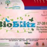 Bioblitz-2012