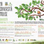 Pillole di biodiversità