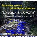 L'acqua & la vita. Flora, fauna ed ecologia dell'ambiente acquatico