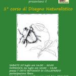 1° Corso di Disegno Naturalistico