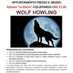 Wolf houling 2015
