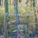 Il Bosco di Colfelice