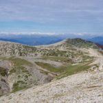 Le praterie e gli arbusteti d'altitudine