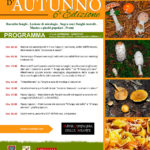 Soavità d'autunno - 6° edizione