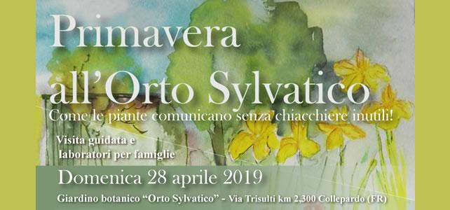 Primavera all'Orto Sylvatico - 28 aprile 2019