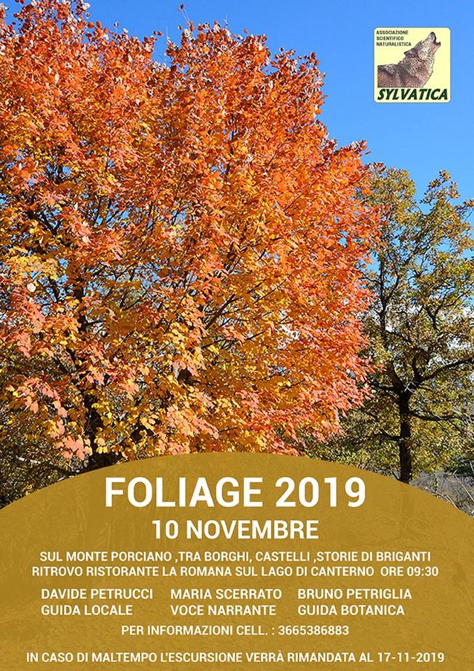 Foliage sul Monte Porciano - 10 novembre 2019