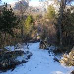 Orto d'inverno